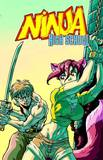 Ninja High School #173