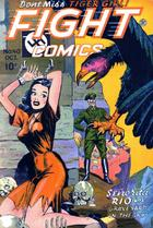 Fight Comics Various Covers