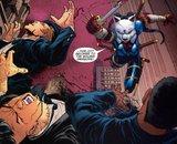 Robin #179